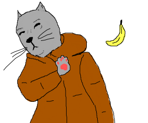 Cat doesn't want to eat banana