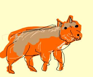 buff fox