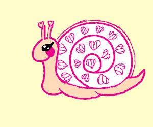 Lovely Snail ♡