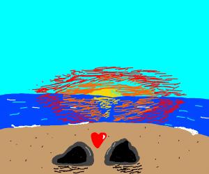 rock lovers enjoy the sunset