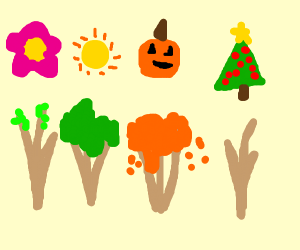 trees throughout the seasons