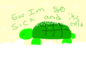 turtle with runny nose