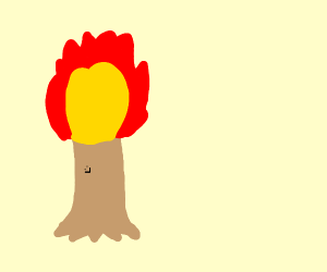 The tree of fire