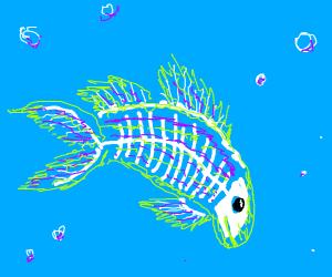 Striped Fish With Visible Skeletal Structure