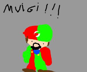 Mario and Luigi fusion
