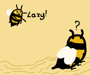 A bee telling another its lazy