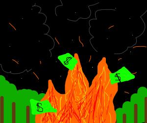 Money burning in fire