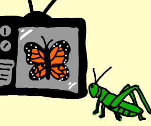 Grasshopper watches butterfly on TV