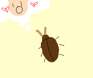 A cockroach thinks of a pig