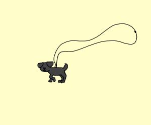 Pet Necklace
