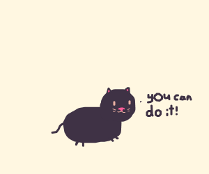 beautiful kitten! motivational kitten! lovely