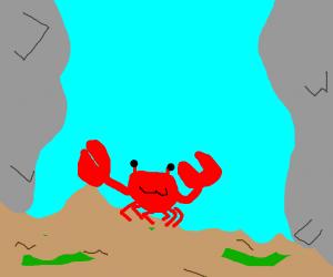 Lobster rave