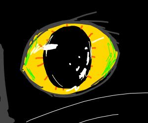 cats eye?
