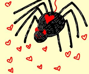 Cute devil spider