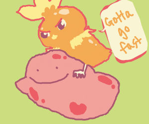 Torchic riding ditto
