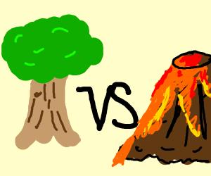 tree vs volcano