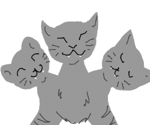 Three headed cat
