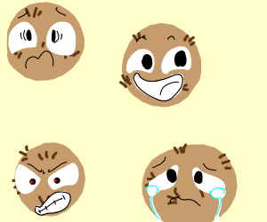 four emotional coconuts