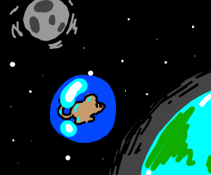 mouse in a bubble in space