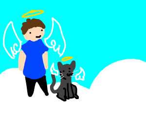 Man and cat in heaven
