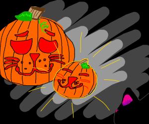 Pumpkitten