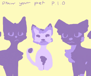 Draw your pet p.i.o.