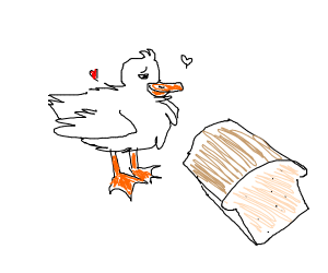duck stares with admiration at bread loaf