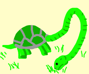 Tortoise with a 10ft neck