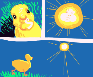 a duck stares at the sun