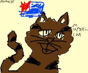 african american cat