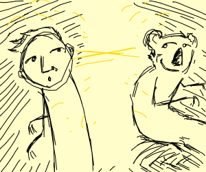 Jazza exchanging glances with a koala