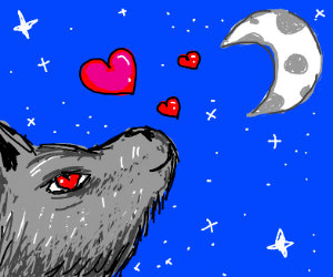 Wolf loves the moon