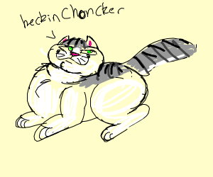 a heckin CHONKER of a kitty