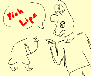 bunny bullies a fish