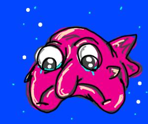 Sad blobfish
