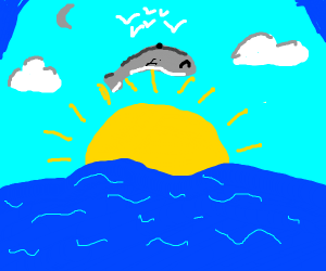 dolphin jumping over the sun