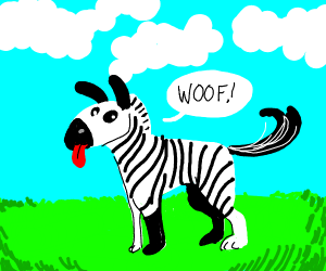 A Mix Between A Zebra And A Dog