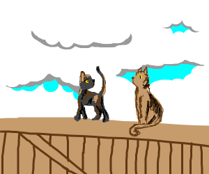 Tortoiseshell Cat and Tabby Cat on a fence