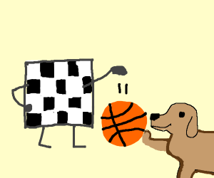 Checkerboard plays bball with doggo
