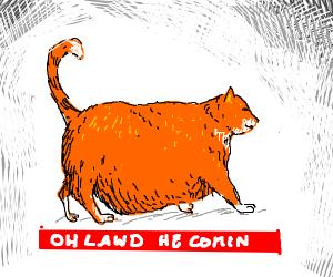 Chonk cat