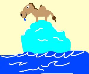 camel on an iceberg