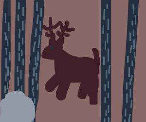 Forest dusk