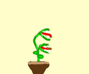 A Deadly Plant