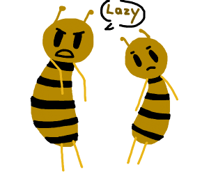 father bee complains about his son's laziness