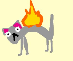 Help! The cat's on fire!