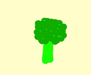 Brocli