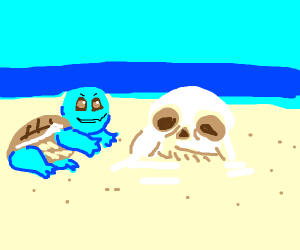 squirtle buildin sans from sands
