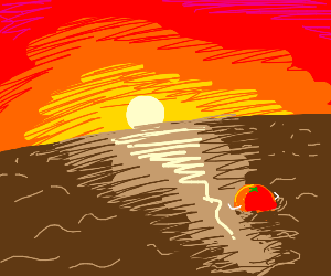 orange in the ocean watches the sunset