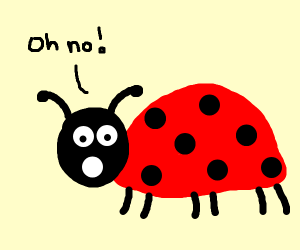 Lady bug is scared