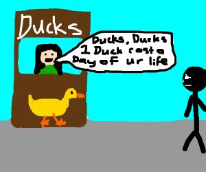 Ducks for days